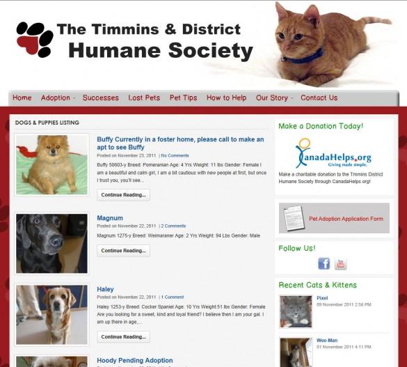 Timmins Humane Society pet list