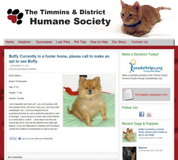 Timmins Humane Society pet view